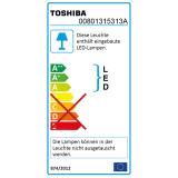 Toshiba LED Highbay 200W 20000Lm 5000K 100° Hallenleuchte 1-10V dimmbar